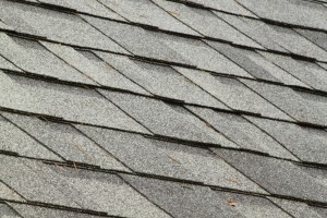 Basic Guide In Roof Cleaning