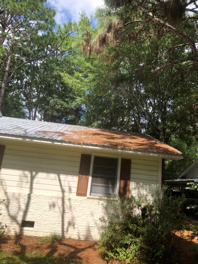 Fairhope Metal Roof Cleaning