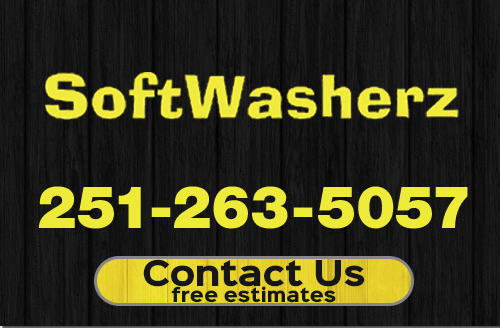 SoftWasherz mobile header and logo